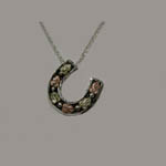 Landstrom's Black Hills Gold Sterling Silver horseshoe necklace