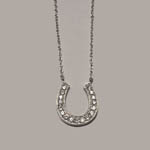 Sterling Silver cubic zirconia horseshoe necklace