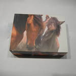 Wild Horses boxed cards